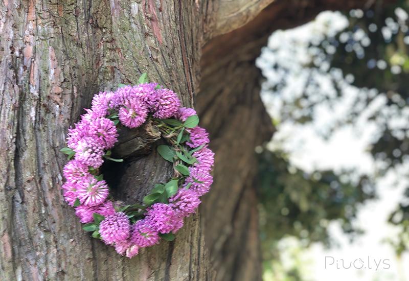 レッドクローバー(ムラサキツメクサ)の花輪